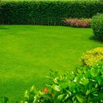 Tudd meg, milyen számodra a tökéletes kert a horoszkópod szerint!