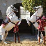 A Lázár testvérek vitték terepszemlézni a világhírű Spanyol Királyi Lovasiskola vezetőjét