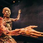 Budapestre érkezik a világhírű BODY kiállítás