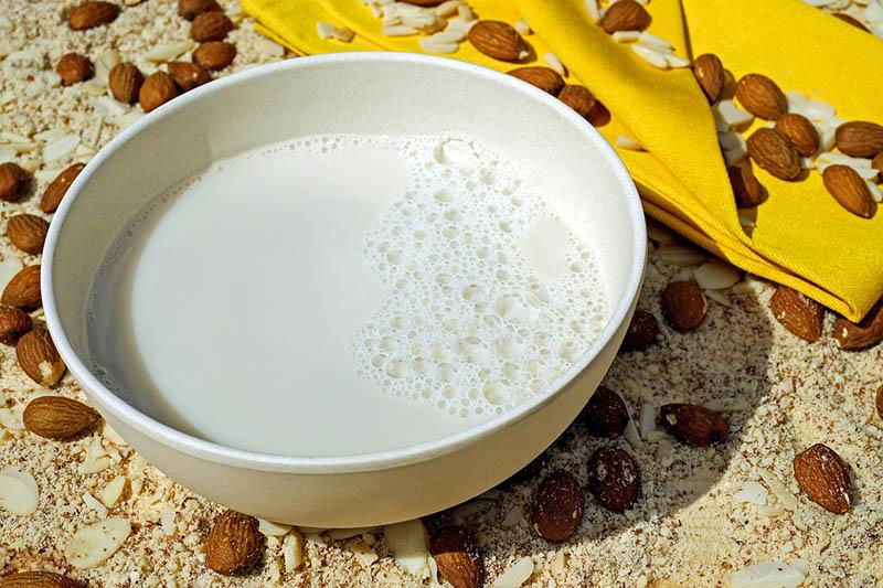 tej és tejtermék 2