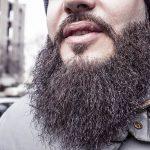 Közeleg Magyarország első szakáll szépségversenye